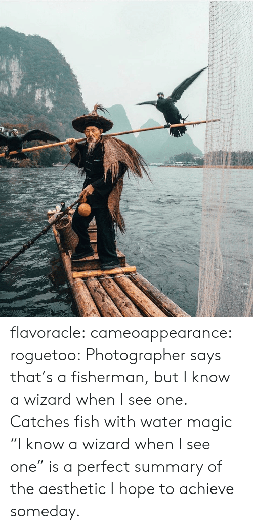 """Aesthetic: flavoracle: cameoappearance:  roguetoo: Photographer says that's a fisherman, but I know a wizard when I see one.  Catches fish with water magic   """"I know a wizard when I see one"""" is a perfect summary of the aesthetic I hope to achieve someday."""