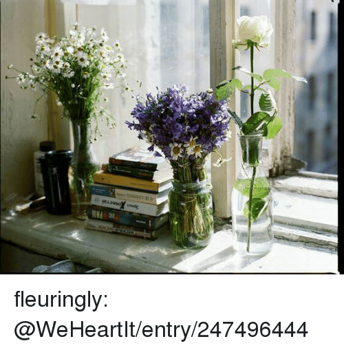 Tumblr, Blog, and Http: fleuringly: @WeHeartIt/entry/247496444