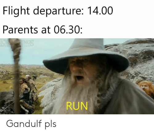 The Lord of the Rings: Flight departure: 14.00  Parents at 06.30:  RUN Gandulf pls