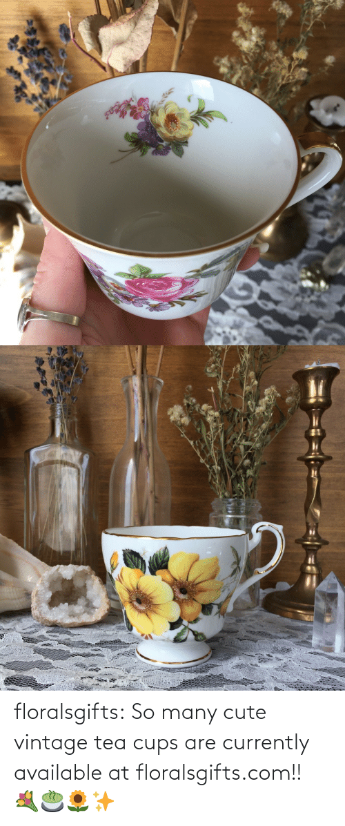 vintage: floralsgifts:  So many cute vintage tea cups are currently available at floralsgifts.com!! 💐🍵🌻✨