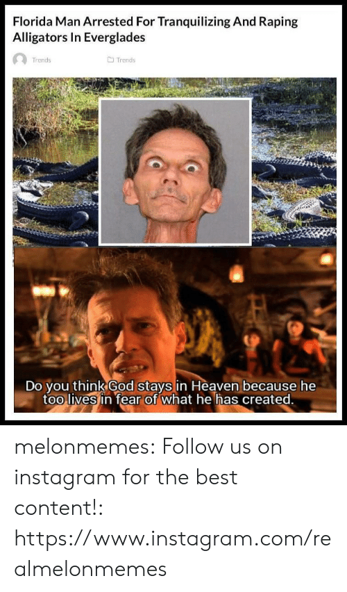 Florida Man, God, and Heaven: Florida Man Arrested For Tranquilizing And Raping  Alligators In Everglades  Trends  Trends  Do you think God stays in Heaven because he  too lives in fear of what he has created. melonmemes:  Follow us on instagram for the best content!: https://www.instagram.com/realmelonmemes