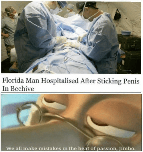 Heat: Florida Man Hospitalised After Sticking Penis  In Beehive  We all make  mistakes in the heat of passion, Jimbo.