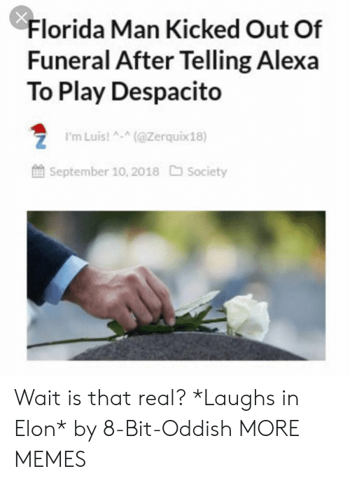 kicked out: Florida Man Kicked Out Of  Funeral After Telling Alexa  To Play Despacito  ZI'mLuis!(@Zerquix18)  September 10, 2018 Society Wait is that real? *Laughs in Elon* by 8-Bit-Oddish MORE MEMES