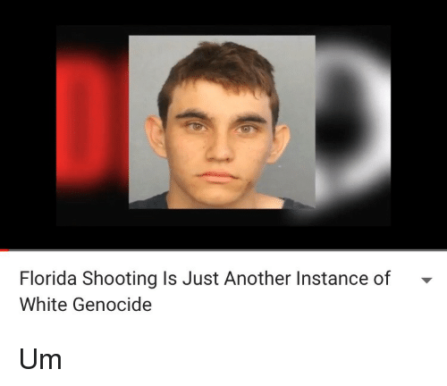 White Genocide: Florida Shooting Is Just Another Instance of -  White Genocide <p>Um</p>