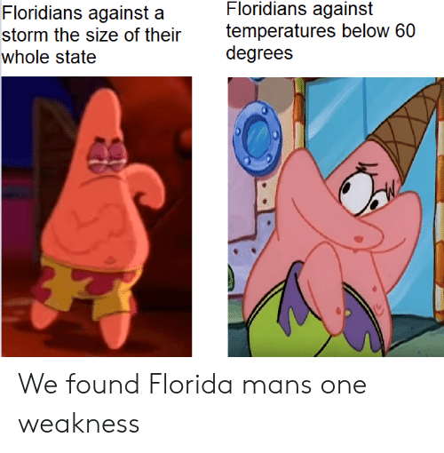 We Found: Floridians against  temperatures below 60  degrees  Floridians against a  storm the size of their  whole state We found Florida mans one weakness