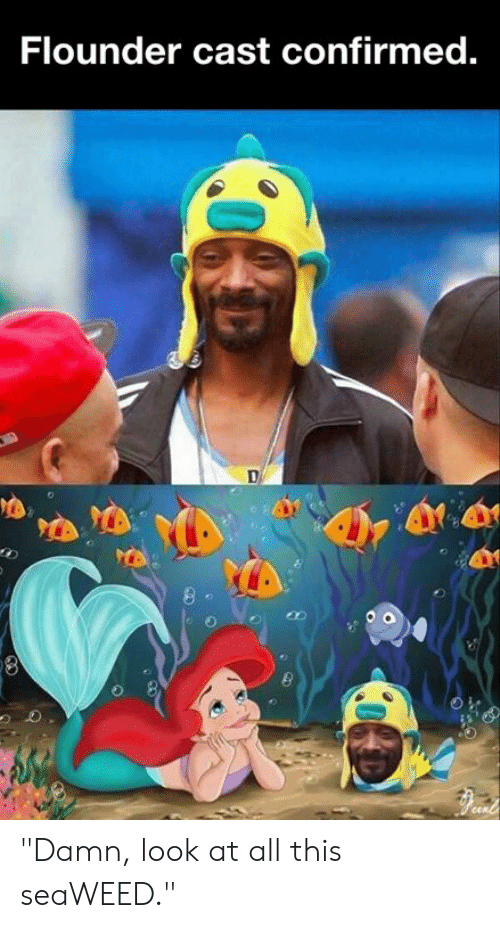 "Look At All: Flounder cast confirmed. ""Damn, look at all this seaWEED."""