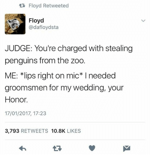 """Groomsmen: Floyd Retweeted  Floyd  @dafloydsta  JUDGE: You're charged with stealing  penguins from the zoo.  ME: 치ips right on mic"""" I needed  groomsmen for my wedding, your  Honor.  17/01/2017, 17:23  3,793 RETWEETS 10.8K LIKES"""