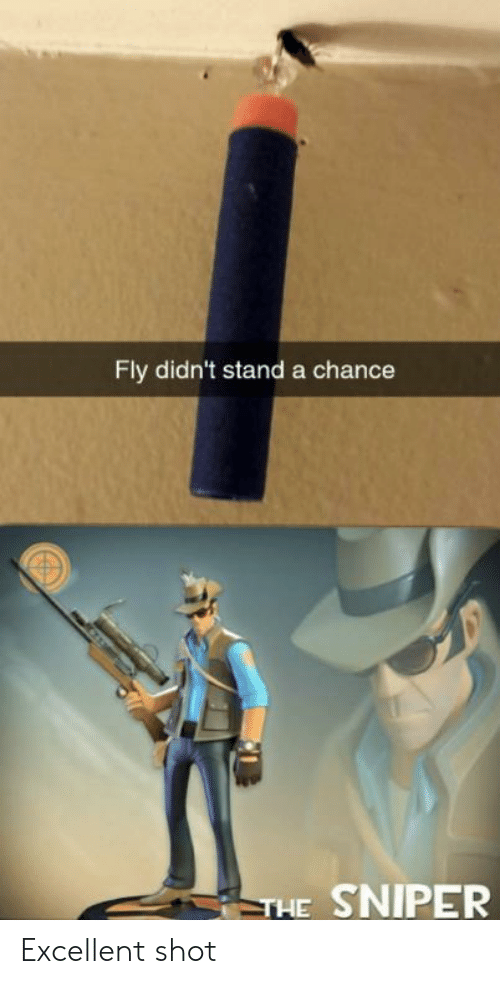 chance: Fly didn't stand a chance  THE SNIPER Excellent shot
