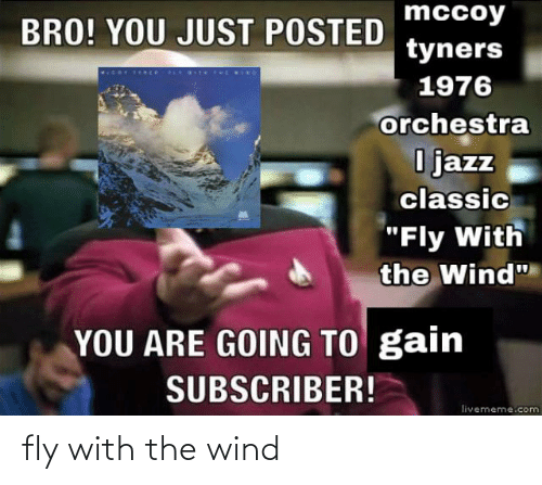 fly: fly with the wind