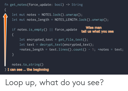 Text, Programmer Humor, and Can: fn get_notes(force_update : bool) -> String  {  NOTES.lock ().unwrap();  let mut notes  NOTES_LENGTH.lock ().unwrap();  let mut notes_length  Wise man  if notes.is_empty () || force_update  tell us what you see  get_file_text () ;  let encrypted_text  let text  decrypt_text(encrypted_text) ;  *notes_length  text.lines().count() - 1; *notes  text;  }  notes.to_string()  } I can see.. the beginning Loop up, what do you see?