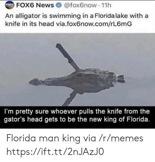 Pulls: FOK  FOX6 News @fox6now 11h  An alligator is swimming in a Florida lake with a  knife in its head via.fox6now.com/rL6mG  I'm pretty sure whoever pulls the knife from the  gator's head gets to be the new king of Florida. Florida man king via /r/memes https://ift.tt/2nJAzJ0