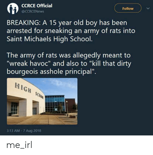 "And Also: Follow  CCRCE Official  @CCRCENEWS  BREAKING: A 15 year old boy has been  arrested for sneaking an army of rats into  Saint Michaels High School.  The army of rats was allegedly meant to  ""wreak havoc"" and also to ""kill that dirty  bourgeois asshole principal""  HIGH SCHOOL  3:13 AM 7 Aug 2018 me_irl"