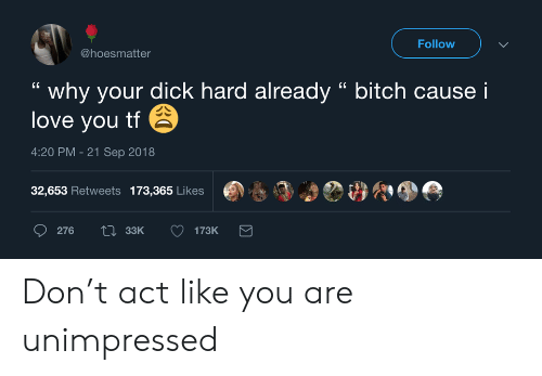 "Bitch, Love, and I Love You: Follow  @hoesmatter  why your dick hard already "" bitch cause i  love you tf  4:20 PM -21 Sep 2018  32,653 Retweets 173,365 Likes  Li33K  276  173K Don't act like you are unimpressed"