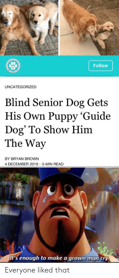 Puppy: Follow  UNCATEGORIZED  Blind Senior Dog Gets  His Own Puppy 'Guide  Dog' To Show Him  The Way  BY BRYAN BROWN  4 DECEMBER 2019 · 3-MIN READ  It's enough to make a grown man cry. Everyone liked that