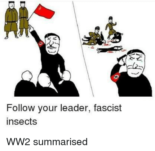 Fullcommunism, Ww2, and Insects: Follow your leader, fascist  insects