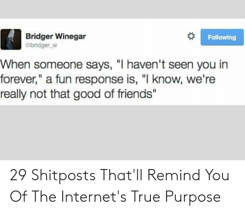"Friends, True, and Forever: Following  Bridger Winegar  @bridger W  When someone says, ""I haven't seen you in  forever,"" a fun response is, ""I know, we're  really not that good of friends"" 29 Shitposts That'll Remind You Of The Internet's True Purpose"