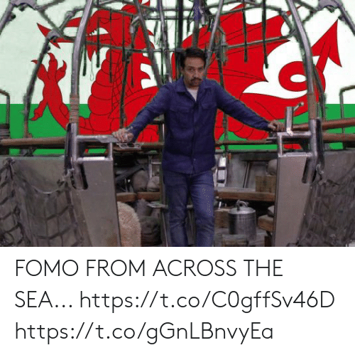 Memes, 🤖, and Fomo: FOMO FROM ACROSS THE SEA... https://t.co/C0gffSv46D https://t.co/gGnLBnvyEa