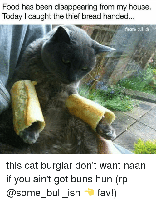Burglarer: Food has been disappearing from my house.  Today I caught the thief bread handed  @some bull ish this cat burglar don't want naan if you ain't got buns hun (rp @some_bull_ish 👈 fav!)