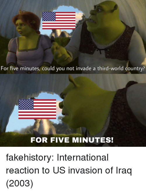 third world: For five minutes, could you not invade a third-world country?  FOR FIVE MINUTES! fakehistory:  International reaction to US invasion of Iraq (2003)