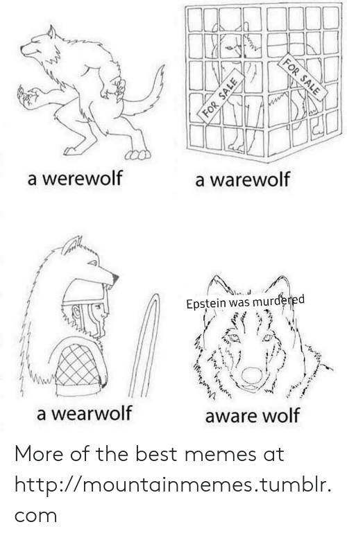 werewolf: FOR SALE  a warewolf  a werewolf  Epstein was murdered  aware wolf  a wearwolf  FOR SALE More of the best memes at http://mountainmemes.tumblr.com