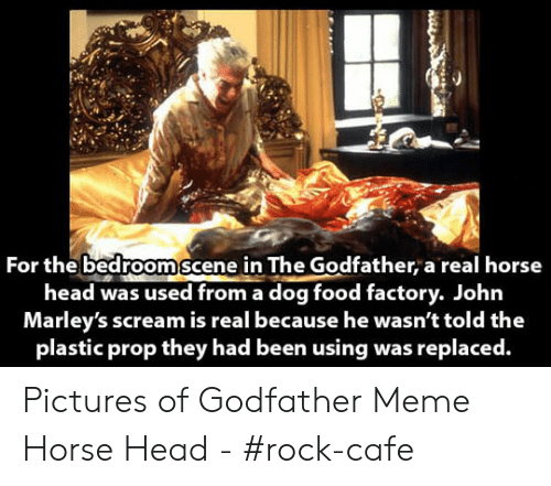 Meme Horse: For the bedroomscene in The Godfather, a real horse  head was used from a dog food factory. John  Marley's scream is real because he wasn't told the  plastic prop they had been using was replaced. Pictures of Godfather Meme Horse Head - #rock-cafe