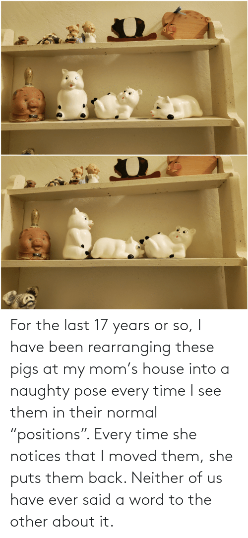 """Naughty: For the last 17 years or so, I have been rearranging these pigs at my mom's house into a naughty pose every time I see them in their normal """"positions"""". Every time she notices that I moved them, she puts them back. Neither of us have ever said a word to the other about it."""