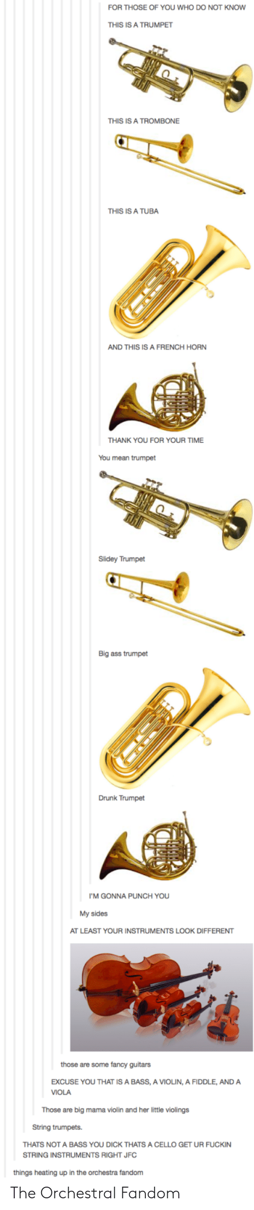 My Sides: FOR THOSE OF YOU WHO DO NOT KNOW  THIS IS A TRUMPET  THIS IS A TROMBONE  THIS IS A TUBA  AND THIS IS A FRENCH HORN  THANK YOU FOR YOUR TIME  You mean trumpet  Slidey Trumpet  Big ass trumpet  Drunk Trumpet  I'M GONNA PUNCH YOU  My sides  AT LEAST YOUR INSTRUMENTS LOOK DIFFERENT  those are some fancy guitars  EXCUSE YOU THAT IS A BASS, A VIOLIN, A FIDDLE, ANDA  VIOLA  Those are big mama violin and her little violings  String trumpets.  THATS NOT A BASS YOU DICK THATS A CELLO GET UR FUCKIN  STRING INSTRUMENTS RIGHT JFC  things heating up in the orchestra fandom The Orchestral Fandom