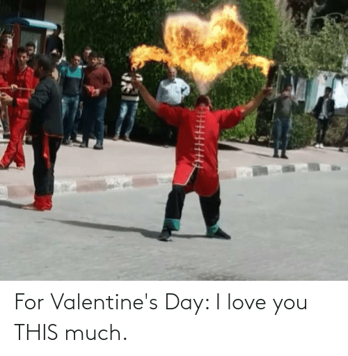 I Love You: For Valentine's Day: I love you THIS much.