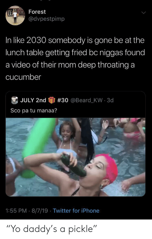 "sco: Forest  @dvpestpimp  In like 2030 somebody is gone be at the  lunch table getting fried bc niggas found  a video of their mom deep throating a  cucumber  JULY 2nd  # 30  @Beard - KW  3d  Sco pa tu manaa?  1:55 PM 8/7/19 Twitter for iPhone ""Yo daddy's a pickle"""