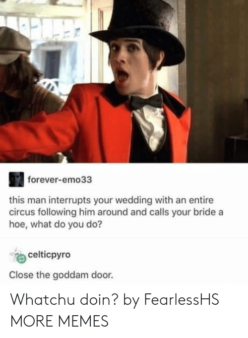 a hoe: forever-emo33  this man interrupts your wedding with an entire  circus following him around and calls your bride a  hoe, what do you do?  celticpyro  Close the goddam door. Whatchu doin? by FearlessHS MORE MEMES
