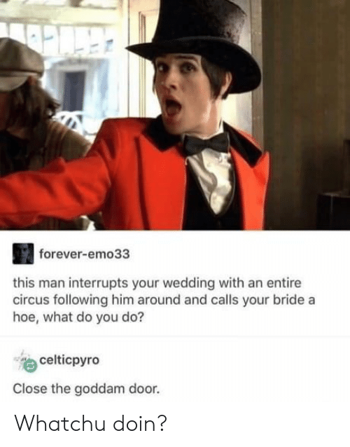 Hoe, Forever, and Wedding: forever-emo33  this man interrupts your wedding with an entire  circus following him around and calls your bride a  hoe, what do you do?  celticpyro  Close the goddam door. Whatchu doin?