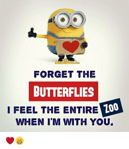 forgeted: FORGET THE  BUTTERFLIES  IFEEL THE ENTIRE  Z00  LO  WHEN I'M WITH YOU ❤️😁