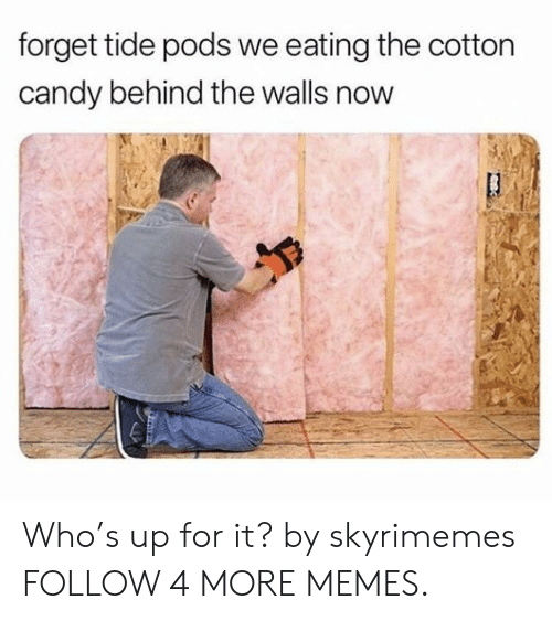 Whos Up: forget tide pods we eating the cotton  candy behind the walls now Who's up for it? by skyrimemes FOLLOW 4 MORE MEMES.