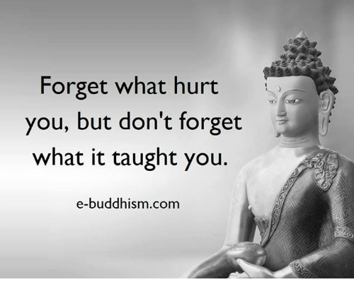 Memes, Buddhism, and 🤖: Forget what hurt you, but don't forget what it  taught you. e-buddhism com