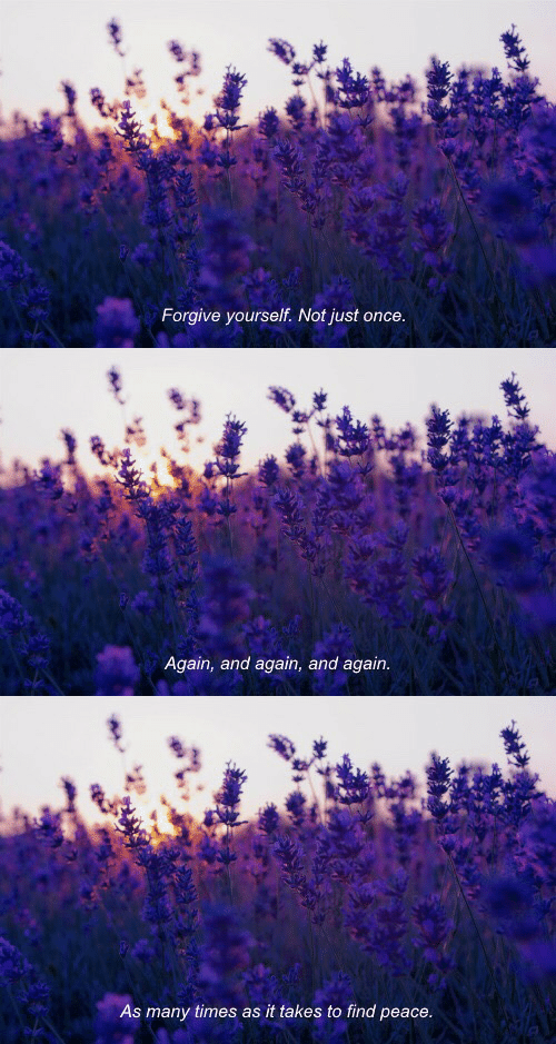 To Find: Forgive yourself. Not just once   Again, and again, and again.   As many times as it takes to find peace.