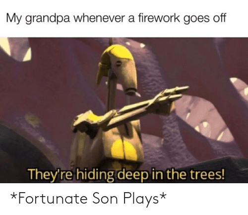 fortunate: *Fortunate Son Plays*