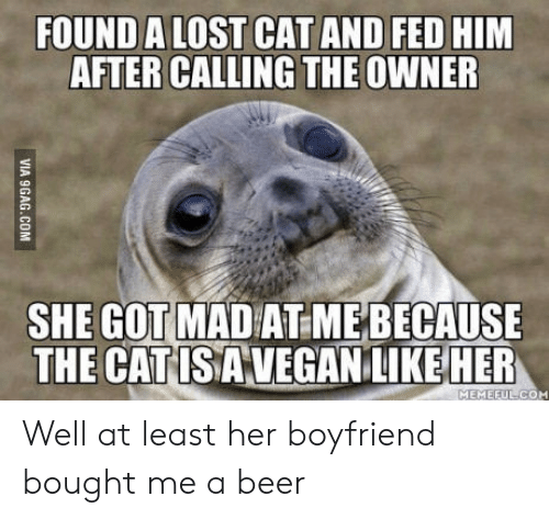 Lost Cat: FOUND A LOST CAT AND FED HIM  AFTER CALLING THE OWNER  SHE GOT MAD AT MEBECAUSE  THE CATISAVEGANLIKEHER  MEMEFULCOM Well at least her boyfriend bought me a beer