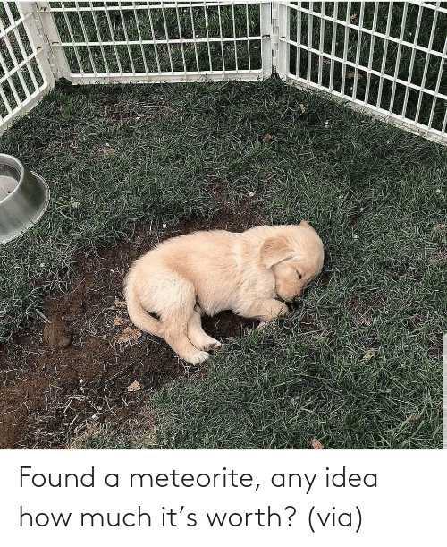 idea: Found a meteorite, any idea how much it's worth? (via)