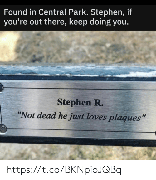 "Memes, Stephen, and 🤖: Found in Central Park. Stephen, if  you're out there, keep doing you.  Stephen R.  ""Not dead he just loves plaques"" https://t.co/BKNpioJQBq"