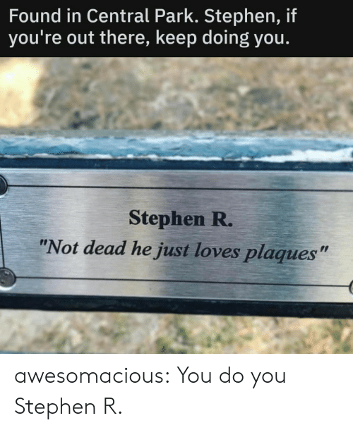 "You Do You: Found in Central Park. Stephen, if  you're out there, keep doing you.  Stephen R.  ""Not dead he just loves plaques"" awesomacious:  You do you Stephen R."