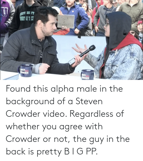 regardless: Found this alpha male in the background of a Steven Crowder video. Regardless of whether you agree with Crowder or not, the guy in the back is pretty B I G PP.