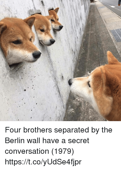 Have A Secret: Four brothers separated by the Berlin wall have a secret conversation (1979) https://t.co/yUdSe4fjpr