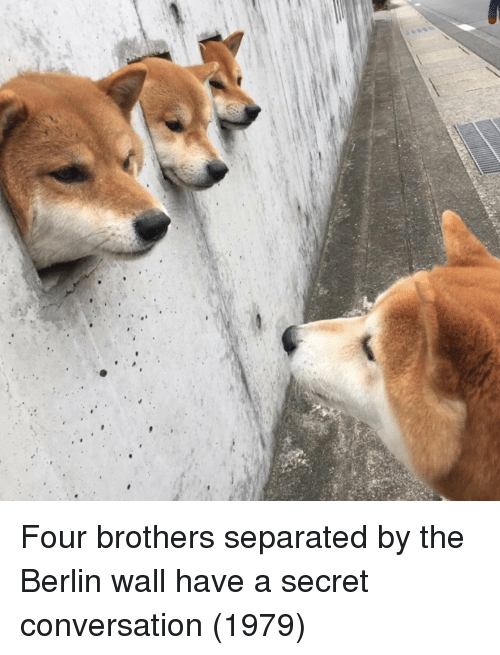 Have A Secret: Four brothers separated by the Berlin wall have a secret conversation (1979)