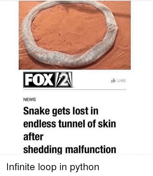 shedding: FOX/2  LIKE  NEWS  Snake gets lost in  endless tunnel of skin  after  shedding malfunction Infinite loop in python