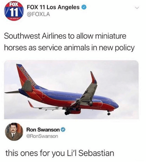Ron Swanson: FOX  FOX 11 Los Angeles  @FOXLA  Southwest Airlines to allow miniature  horses as service animals in new policy  Ron Swanson  @RonSwanson  this ones for you Li'l Sebastian