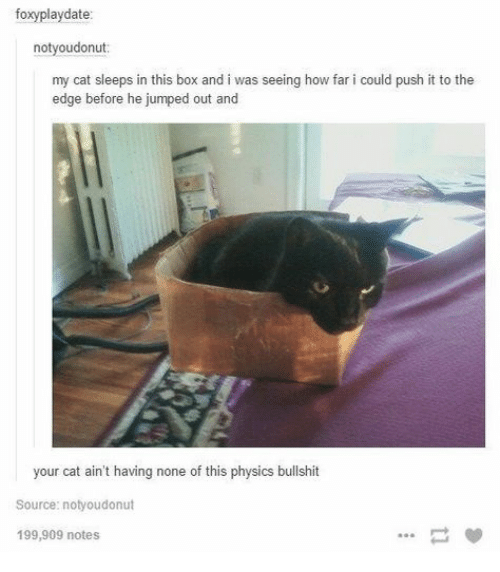 Sleeps: foxyplaydate:  notyoudonut  my cat sleeps in this box and i was seeing how far i could push it to the  edge before he jumped out and  your cat ain't having none of this physics bullshit  Source: notyoudonut  199,909 notes
