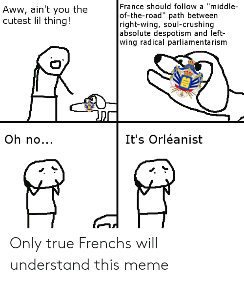 """despotism: France should follow a """"middle  of-the-road"""" path between  right-wing, soul-crushing  absolute despotism and left-  wing radical parliamentarism  Aww, ain't you thee  cutest lil thing!  Oh no...  It's Orléanist Only true Frenchs will understand this meme"""