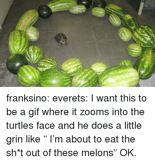 """Gif, Tumblr, and Blog: franksino: everets:  I want this to be a gif where it zooms into the turtles face and he does a little grin like """" I'm about to eat the sh*t out of these melons""""  OK."""
