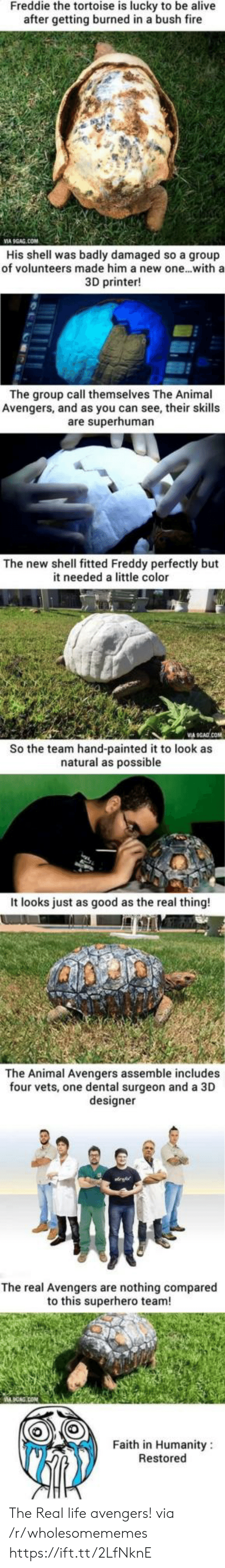 burned: Freddie the tortoise is lucky to be alive  after getting burned in a bush fire  VIA 9GAG.COM  His shell was badly damaged so a group  of volunteers made him a new one...with a  3D printer!  The group call themselves The Animal  Avengers, and as you can see, their skills  are superhuman  The new shell fitted Freddy perfectly but  it needed a little color  So the team hand-painted it to look as  natural as possible  It looks just as good as the real thing!  The Animal Avengers assemble includes  four vets, one dental surgeon and a 3D  designer  The real Avengers are nothing compared  to this superhero team!  Faith in Humanity  Restored The Real life avengers! via /r/wholesomememes https://ift.tt/2LfNknE
