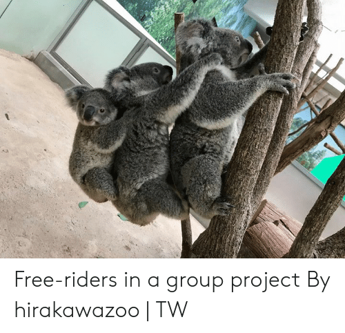 Dank, Free, and 🤖: Free-riders in a group project  By hirakawazoo | TW